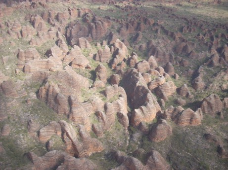 bungles from above (Copy)